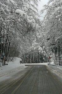 snowy road bend