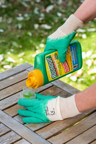 Colorado gardener pouring a capful of RoundUp in the garden