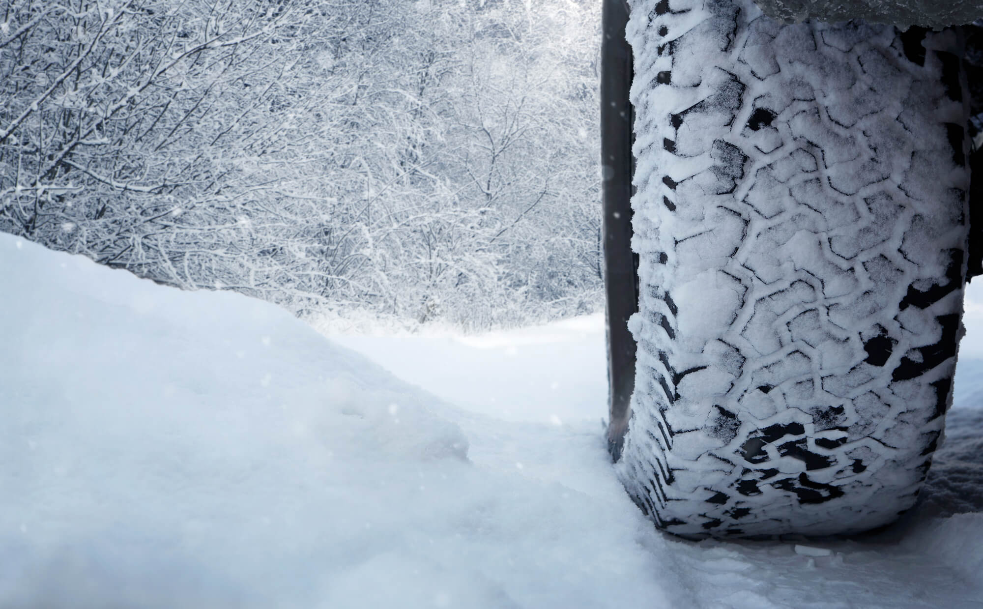 Close up of snow tires on snowy road